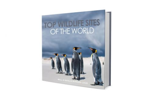 Top Wildlife Sites of the World - New Book!