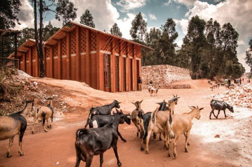 Library of Muyinga / BC Architects