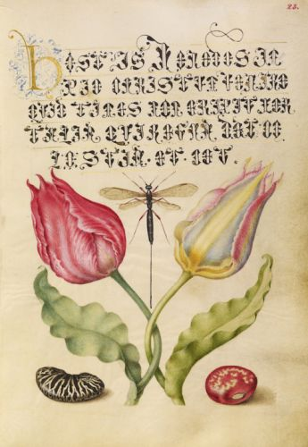 The Model Book of Calligraphy (1561-1596)