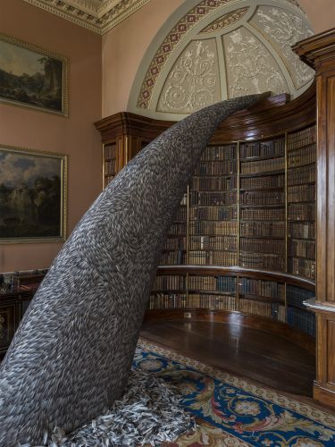 10,000 Pigeon Feathers Cascade from a Bookcase in Kate MccGwire's Latest Installation