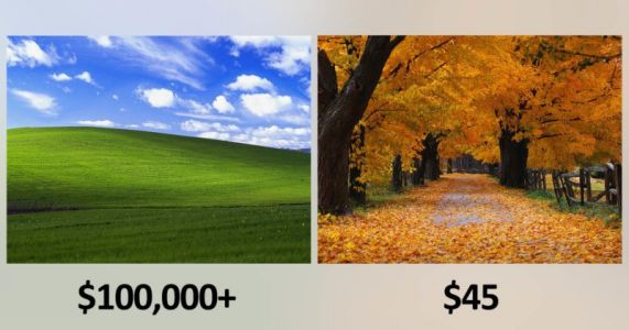 Microsoft Paid 'Bliss' Photog $100K+ and 'Autumn' Photog $45