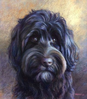 Speedo - A Labradoodle commission