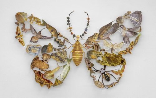 Magazine Cutouts Form Nature Collages Shaped Like Birds and Butterflies by Jennifer Murphy