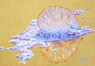 Man O' War, 5x7 Oil on Canvas, Beach Series