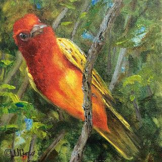 Summer Tanager by Wanda Caro