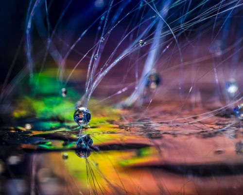 Macro Photography Trick: Create 'Rainbow Flares' with a CD