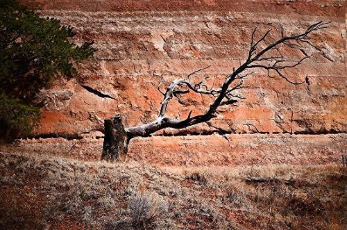 "Landscape Fine Art Photography Nature Photos, New Mexico ""Mesa Wall"" by International Photographer Kit Hedman"