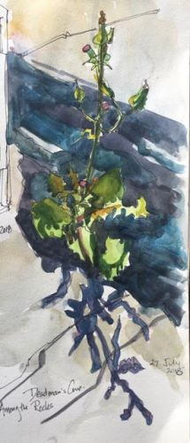 "Day 292 ""Among the Rocks"" ink & watercolor 12 x 5 - and a visit with some artist friends"