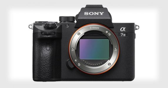 Sony a7 III Review: An Elite Camera with a Friendly Price Tag