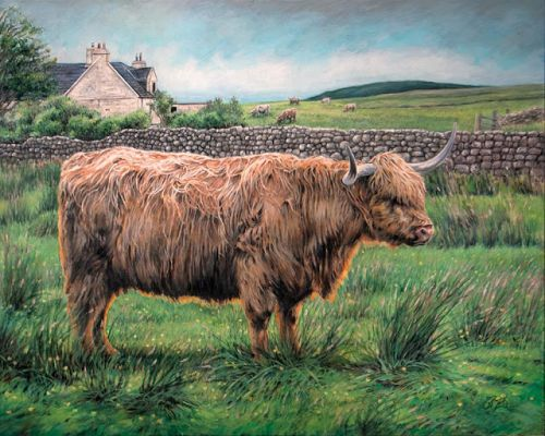 Màthair of Skye | Heilan Coo by Rebecca Zook
