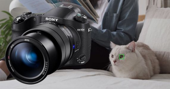 Free Update Adds Real-Time Animal Eye AF to the Sony RX10 IV