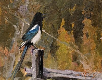 """""""Magpie"""" original oil painting by Robin Weiss"""