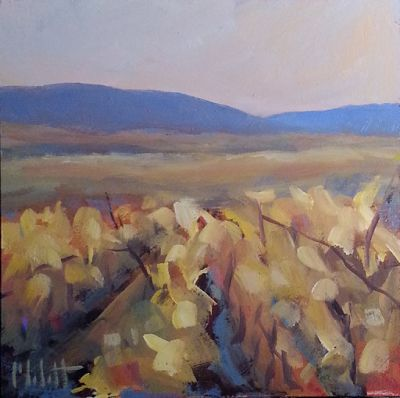 Vineyard Contemporary Impressionism Original Oil Painting