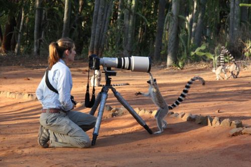 Nature Photography: Where Are the Women?