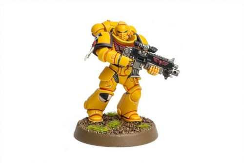 Showcase: Imperial Fists Primaris Intercessor