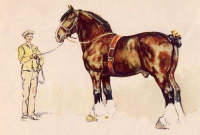 The Horses of Lionel Edwards