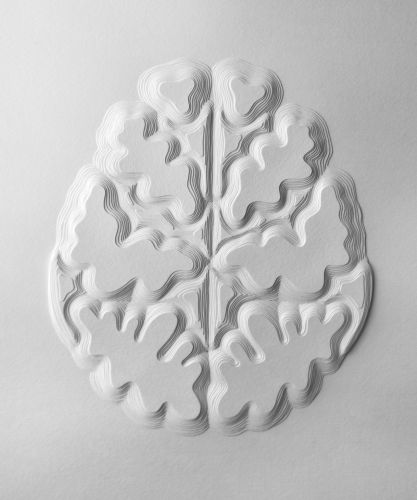 The Mind Reimagined in Paper Brains by Elsa Mora