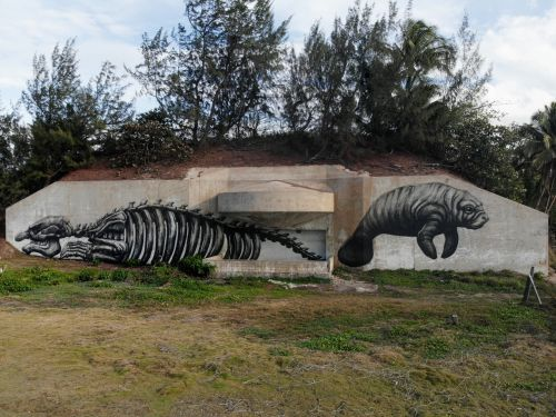 """"""" PRLOVE"""" and """"MANATEE"""" by ROA, in Puerto Rico"""