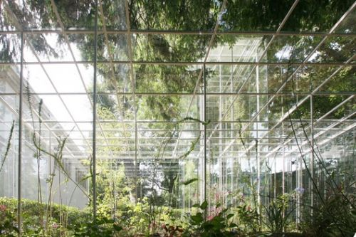 """""""Architecture from Someone's Imagination is not Enough"""": Interview with Junya Ishigami"""