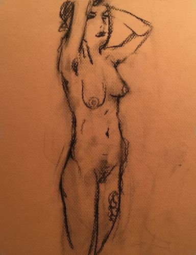 100 Figure Drawings