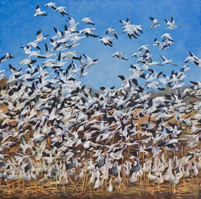 """Original Wildlife Painting,Birds,Nature """"UP"""" by Nancee Jean Busse Painter of the American West"""