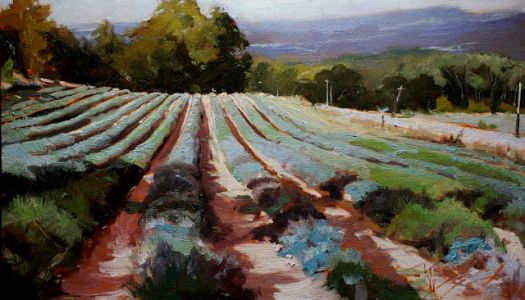 """""""Loving Lavender"""" From Here to France with Robin Weiss, Cole Gallery, Edmonds WA"""