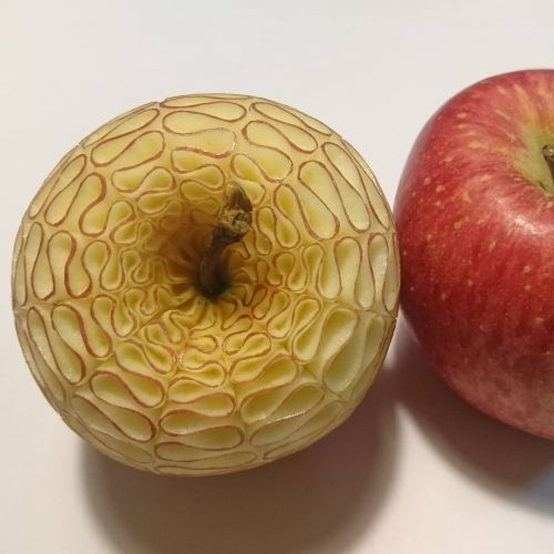 Intricate Patterns Hand-Carved into Fruit and Vegetables by Takehiro Kishimoto