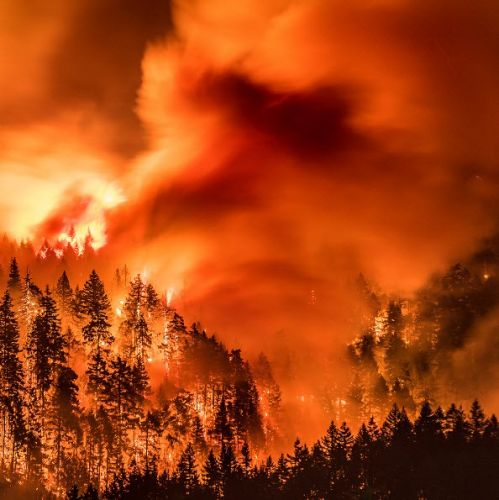 The Eagle Creek Fire Still Burns, Yet We Must Look To The Future