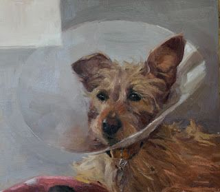 Ruby with Broken Leg and Cone