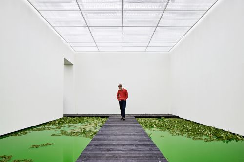 Olafur Eliasson's Newest Exhibition Floods Fondation Beyeler with a Bright Green Pond Filled with Plants