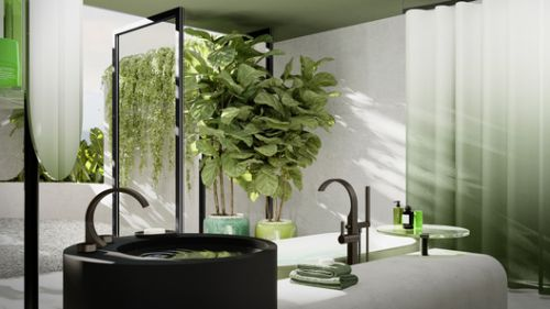 Transforming the Bathroom into a Space for Living