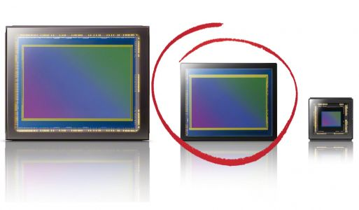 Full-Frame vs Everyone Else: Searching for the 'Ideal' Image Sensor
