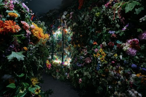Thousands of Fresh and Artificial Flowers Overrun an Abandoned Convenience Store in a Small Michigan Town