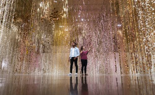 Community: Over 500,000 Preserved and Local Flowers Suspended in the Toledo Museum of Art