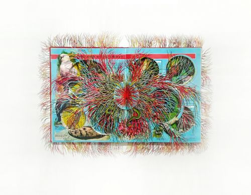 Fringed Paper Networks Peek Out From Vintage Encyclopedias, Textbooks, and Classics by Artist Barbara Wildenboer