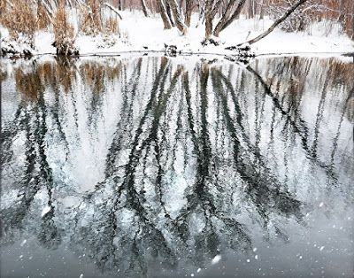 """Nature Fine Art Photography,""""Spring Snow Reflections"""" by Colorado Photographer Kit Hedman, Boarding House Studio Galleries, Denver"""