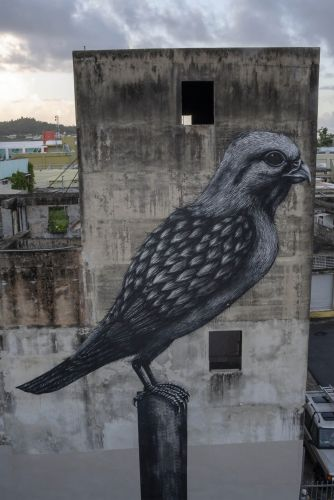 Monumental Murals of Anatomical Creatures by ROA Celebrate Puerto Rico's Biodiversity