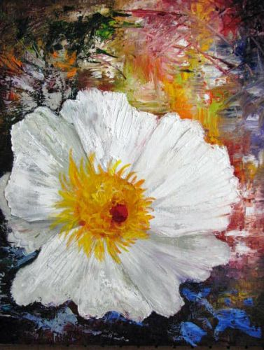White Poppy, textures, Barbara Haviland Texas Floral Artist