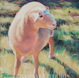 "Sunday Sunsheep, 6"" x 6"", oil on gessobord"