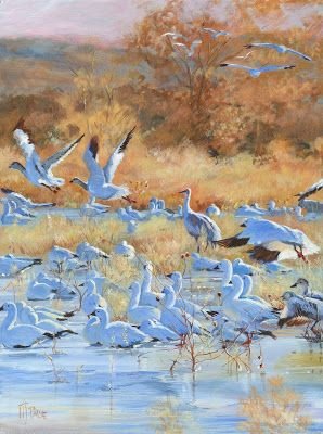 """Original Wildlife, Bird Painting,""""BACK TO BOSQUE"""" by Nancee Jean Busse, Painter of the American West"""