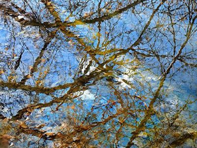 """Landscape Fine Art Photography,Creek, Water """"Reflections and Ripples VII"""