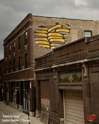 New works from E. LEE go up in Chicago