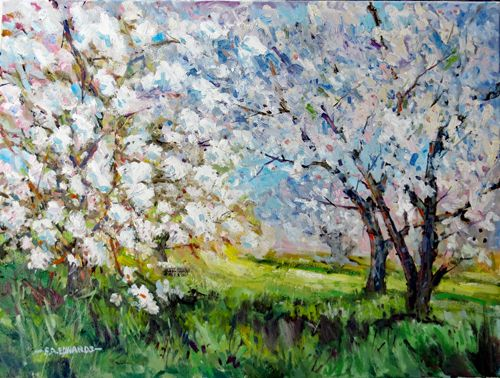 "Orchard In Spring 18"" x 24"" Oil / Canvas"