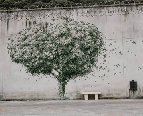 Another day, Pejac