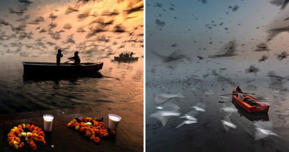 Striking Long Exposures Document Life on a Holy River Though Clouds of Migratory Birds