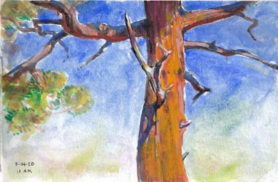 Painting Trees with Personality