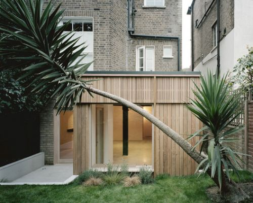 Leaning Yucca House / DF DC